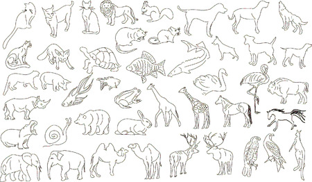 Set of vector animals, rough outlines