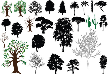 Set of vector trees (silhouettes, drawing)