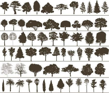Set of silhouettes of vector trees
