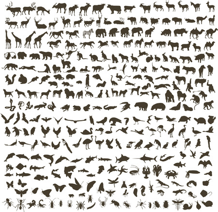 300 silhouettes of animals (mammals, birds, fish, insects) Illustration