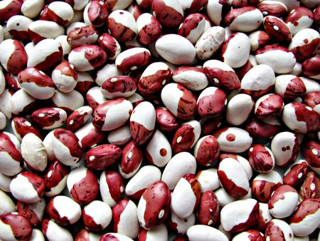 Close-up dry colored beans