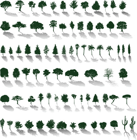 Set of silhouettes of trees and bushes with shadows
