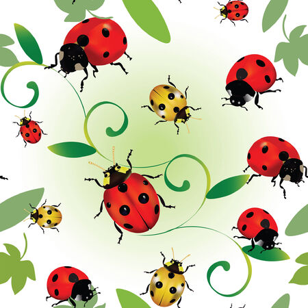 Seamless colourful pattern with ladybugs and leaves Illustration