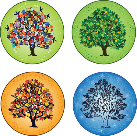Four seasons:  trees in spring, summer, autumn, winter
