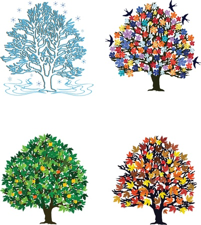 Four seasons trees in spring, summer, autumn, winter Stock Vector - 17095818