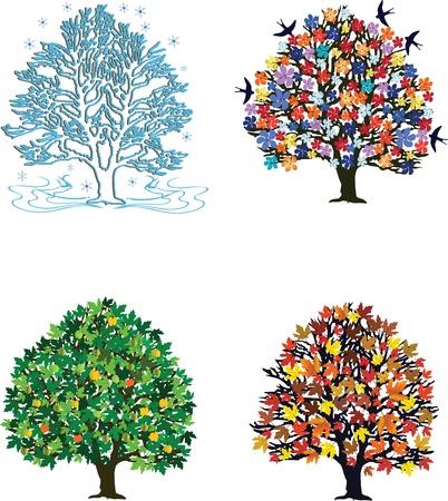 Four seasons trees in spring, summer, autumn, winter Vettoriali