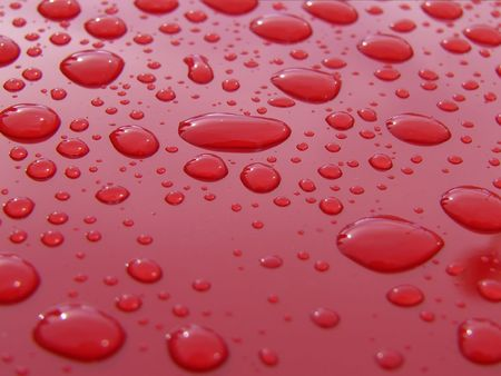 detailing: Water drops on clean car