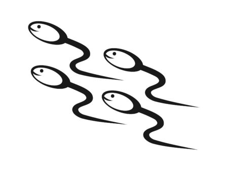 human sperm: Vector illustration of Sperms on their way to home Stock Photo