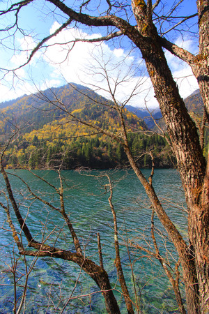 north arrow: Arrow Bamboo Lake,Jiuzhaigou,north of Sichuan province, China.