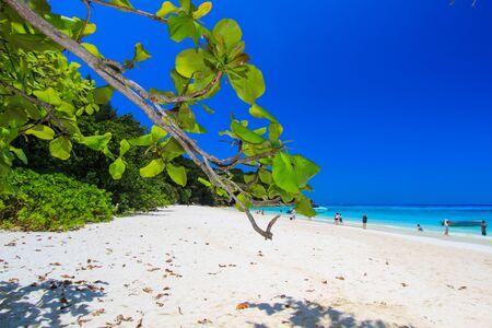 southern thailand: Sunny day at Tachai Island,Similan Islands National Park,Phang Nga Province,southern Thailand. Stock Photo
