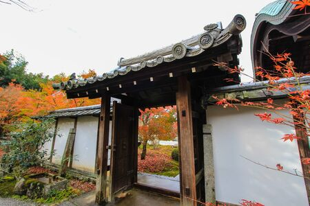 japanese maples: Fall foliage at Enkoji Temple,Kyoto,Japan