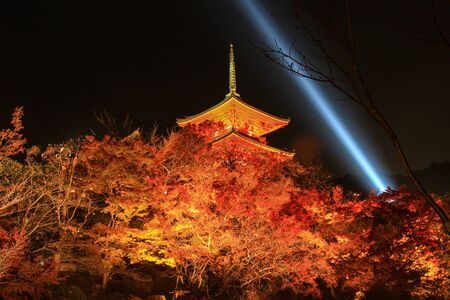 japanese fall foliage: light up at Kiyomizu-dera(an independent Buddhist temple in eastern Kyoto. The temple is part of the Historic Monuments of Ancient Kyoto UNESCO World Heritage site) in autumn