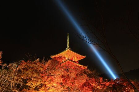 light up: light up at Kiyomizu-dera(an independent Buddhist temple in eastern Kyoto. The temple is part of the Historic Monuments of Ancient Kyoto UNESCO World Heritage site) in autumn