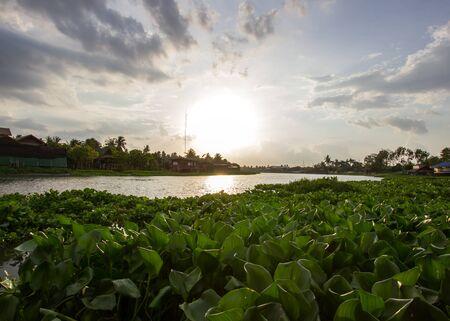 nakhon: evening sun at Tha Chin river(Maenam Tha Chin),Nakhon Pathom,Thailand