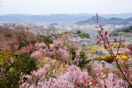 Fukushima City,Mt.Azuma,multicolor flowering trees as seen from Hanamiyama Park,Fukushima,Tohoku,Japan. Stock Photo