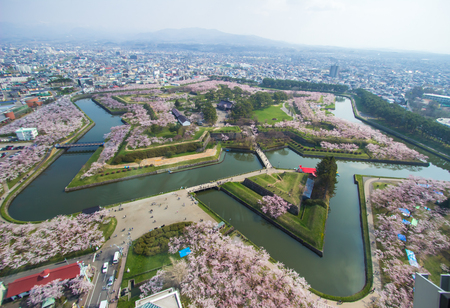 Cherry trees along the moats of Fort Goryokaku as seen from Goryokaku Tower,Hakodate,Hokkaido,Japan in spring.