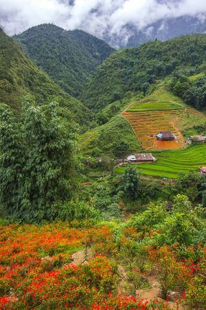 Beautiful scenery of Cat Cat village,a highland cultural village in Sapa,Lao Cai Province,north-west Vietnam. Foto de archivo - 130724523