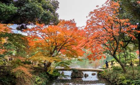 Bunkyo City,Tokyo,Japan on December6,2019:Togetsukyo Bride with autumn colors at Rikugien Garden.