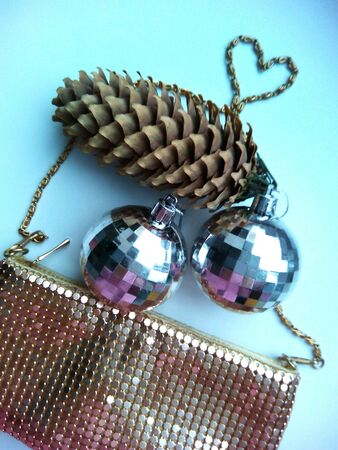 shiny: Pine cone and shiny handbag Stock Photo