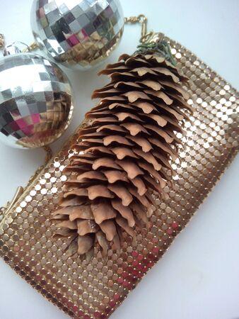 shiny: Pine cone and shiny handbag Stock Photo