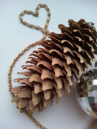 pine cone: Cono e il cuore e Pine Archivio Fotografico