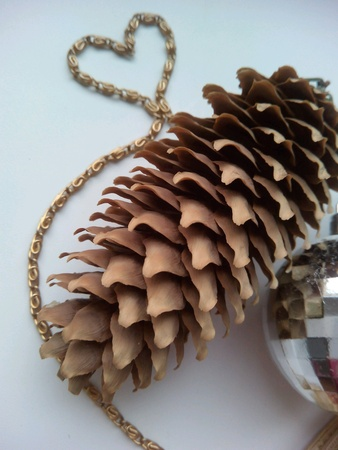 silver: Pine cone and and heart