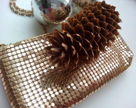 pine cone: Pine cone and shiny handbag Stock Photo