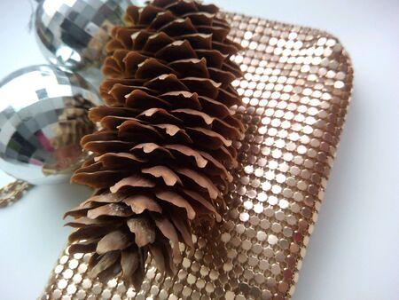 pine cone: Cono del pino e borsa lucida