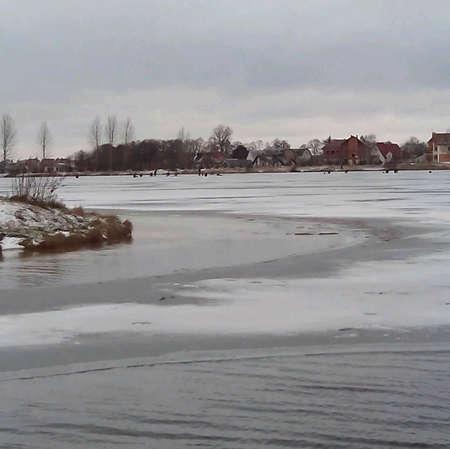 frozen lake: Winter landscape frozen lake shore