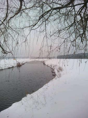 shore: Winter landscape lake shore