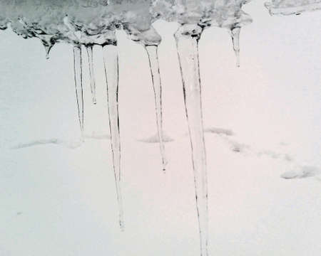 icicles: Icicles on a snow background