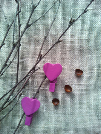 hearts background: Spring branches hearts background Stock Photo