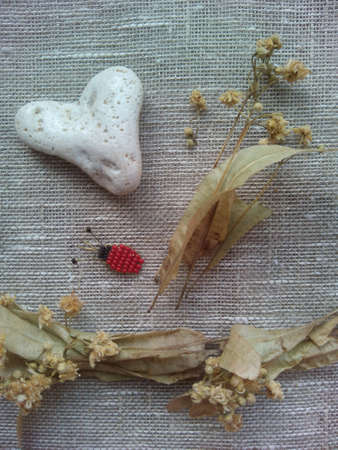 decor: Decor white heart stone,beetle and dry flowers