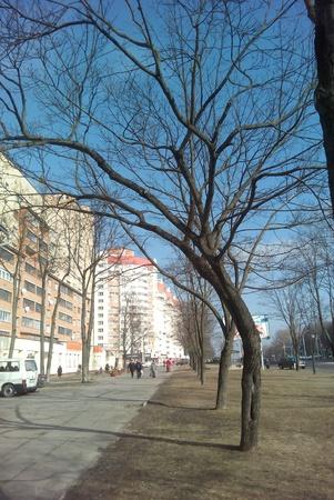 minsk: Streetscape in Minsk blue sky background Stock Photo