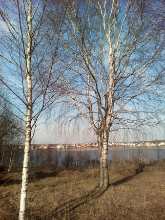 paisaje naturaleza: Naturaleza del paisaje del cielo azul Foto de archivo
