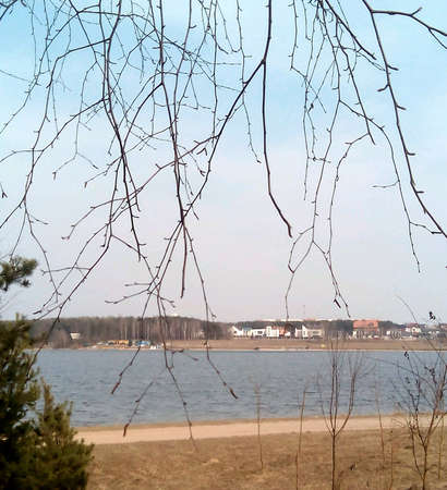 lake shore: Lake shore landscape