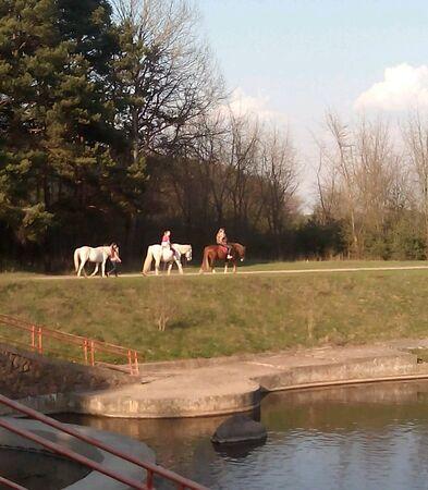 lake shore: Horse riding on the lake shore