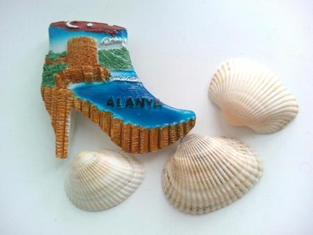 decor: Souvenir sea shells and magnet on a white