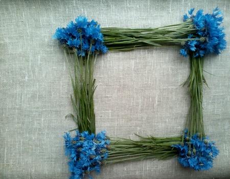 decor: Cornflowers frame natural  Stock Photo