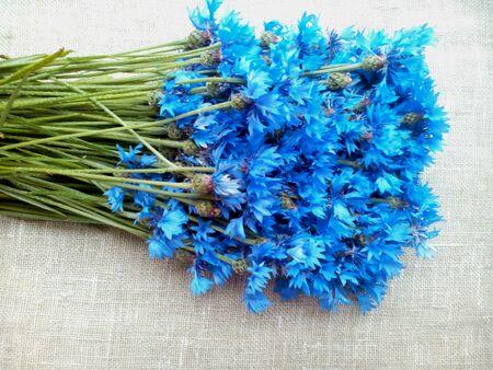 decor: Blue cornflowers natural  Stock Photo