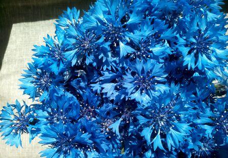 decor: Blue cornflowers