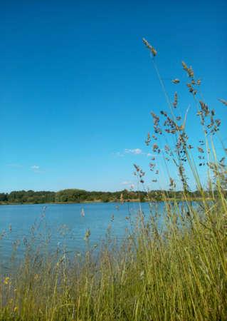 background: Lake summer landscape blue sky background