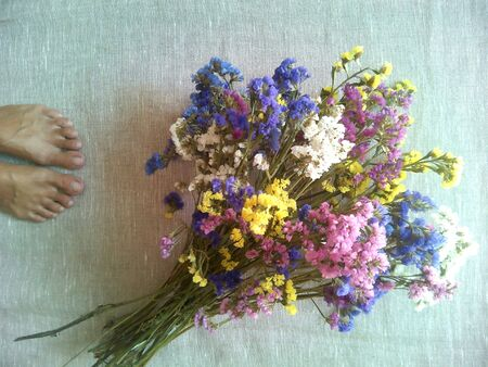 background: Multicolored dry flowers on a natural background