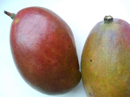 white: Two mango on a white background