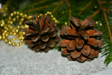 decor: Christmas and New Year decor cones on a fir branch background