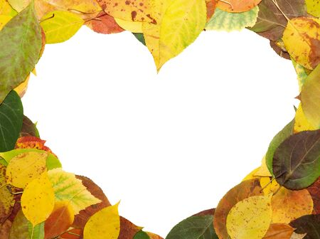 frame from multi-coloured fallen down leaves in form of heart photo