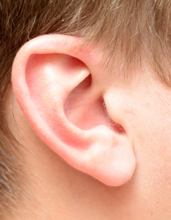human ear: close up view of human ear