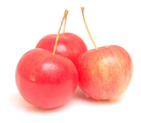 apple isolated on white background photo