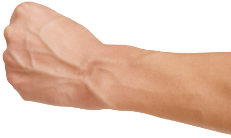veins: arm with visible veins