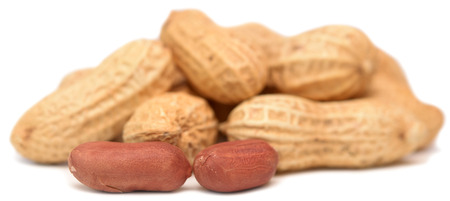 hulled: peanuts isolated on a white background